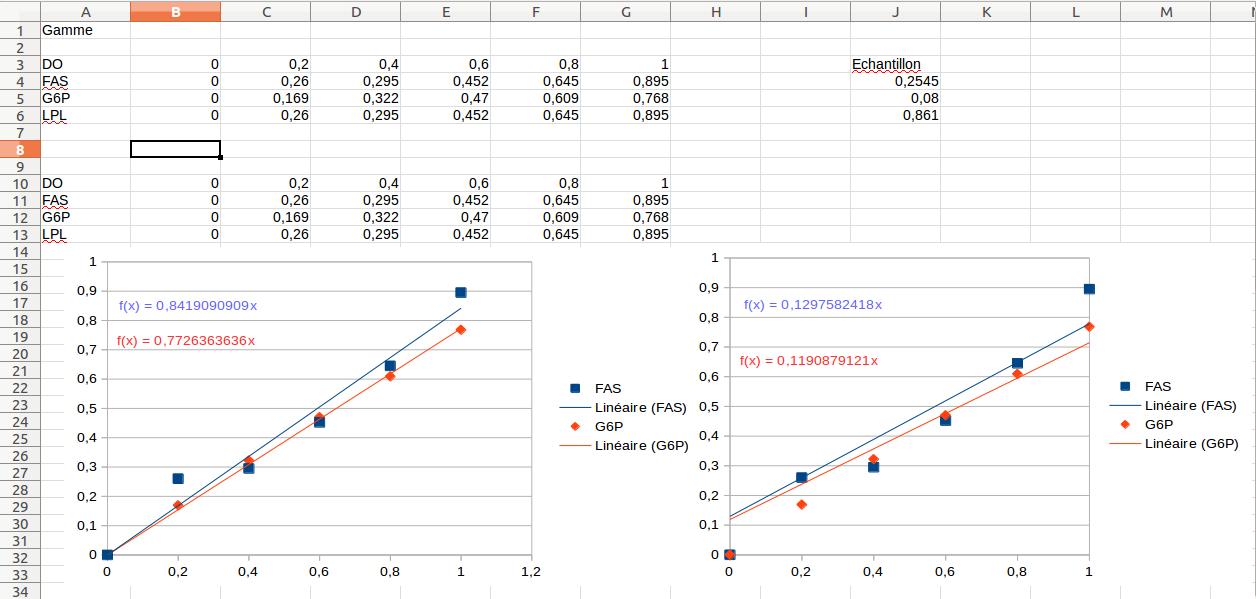 Les différentes courbes de tendance obtenues.